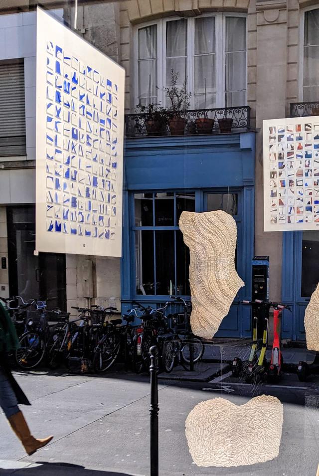 Galerie Thuillier 6 mars 1.jpeg