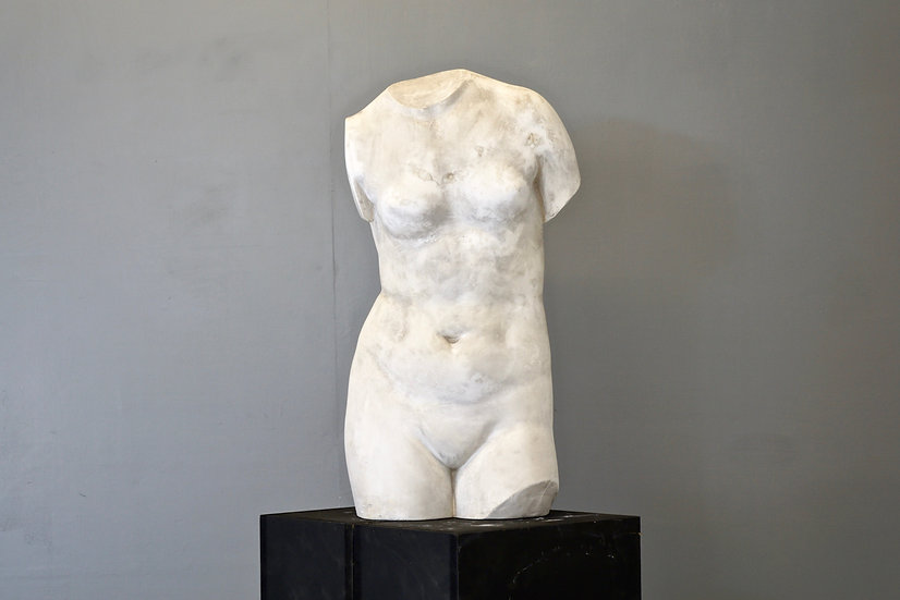 Plaster Cast of Female Torso