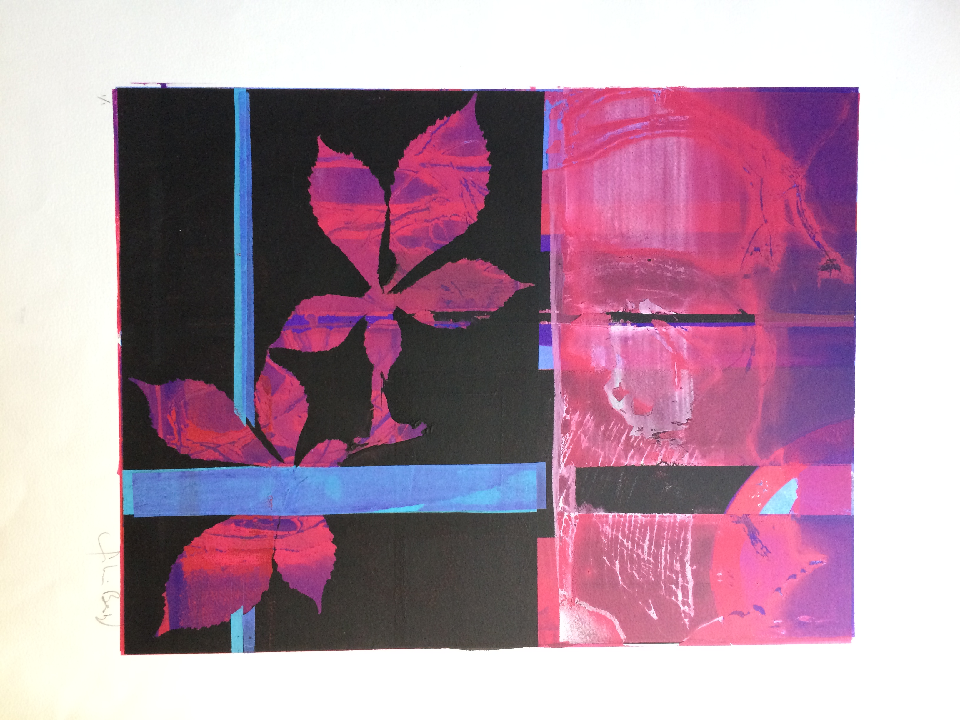 050 Black Fuschia Leaves 49 x 37 Signed