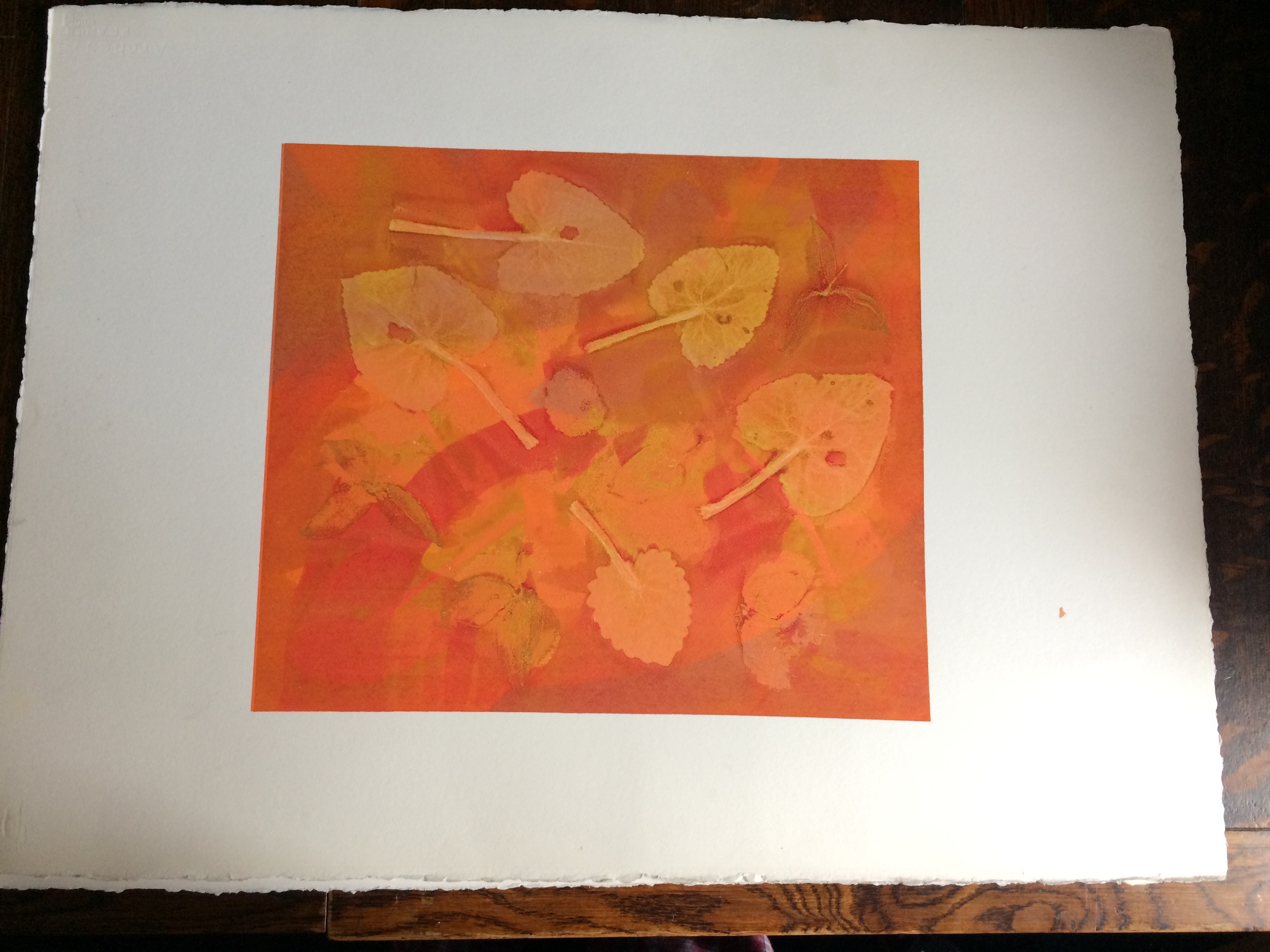 063 Orange Leaves 47 x 38