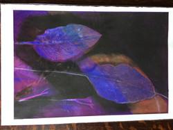 034 Purple Leaves 45 x 30