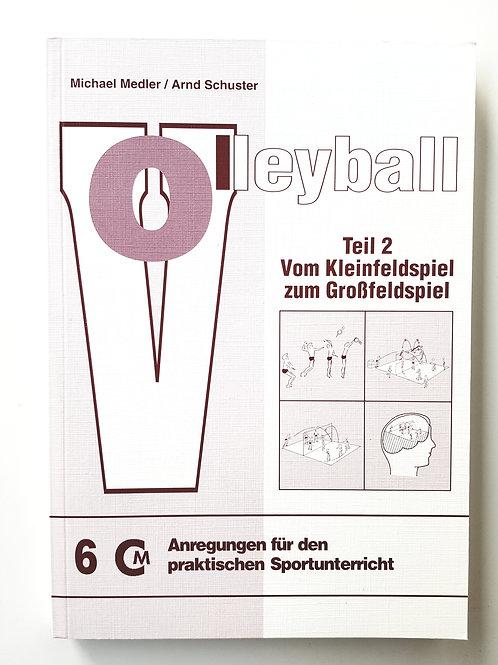 CM 6 Volleyball Teil 2 (Micheal Medler / Arnd Schuster)