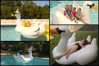 hattyú, swan, medence, pool, inflatable, felfújható, waterball, water-ball, water ball, vizidodgem, bumper, paddler, boat, csónak, vizicsopper, vizidodzsem, dodgem, dodzsem