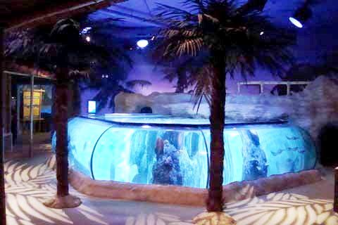 SLC Ray Tank AZ