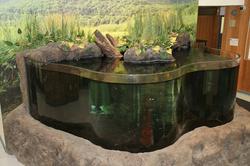 Govenors Island Tank