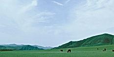 雄大な草原や田園の風景写真:インテリアフォト アート 額入り 手漉き和紙 壁掛け モンゴル オリジナルプリント アートフレーム