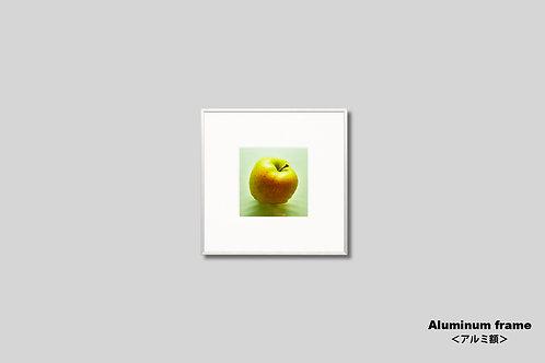リンゴ,写真,インテリア,正方形,額入り,壁掛け,おしゃれ,額装,アート,インテリアフォト,壁飾り,アートフレーム,プレゼント,新築祝い