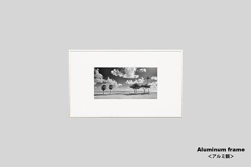 ハワイ,写真,インテリア,風景,自然,海,ヤシの木,ビーチ,インテリアフォト,アート,額入り,額装,モノクロ,オリジナルプリント,アートフレーム,フォトフレーム,おしゃれ,モダン,壁掛け,壁飾り,装飾,ウォールアート,新築祝い