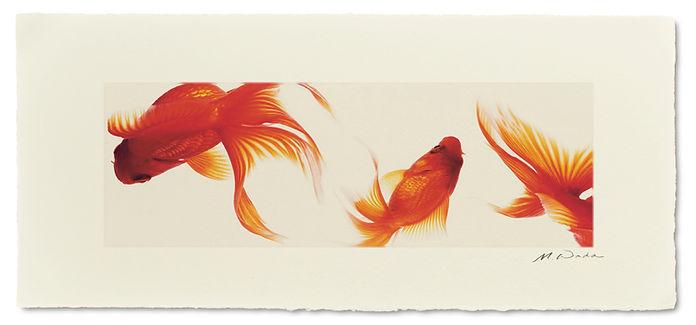 手漉き和紙に写真をプリント:インテリア 額装 壁掛け 壁飾り アート 和室 和モダン 伝統工芸