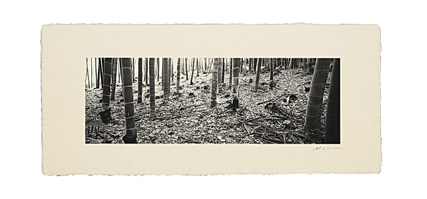 手すき和紙:和室 インテリアフォト 写真 額装 壁掛け 壁飾り 風景写真 和モダン 伝統工芸