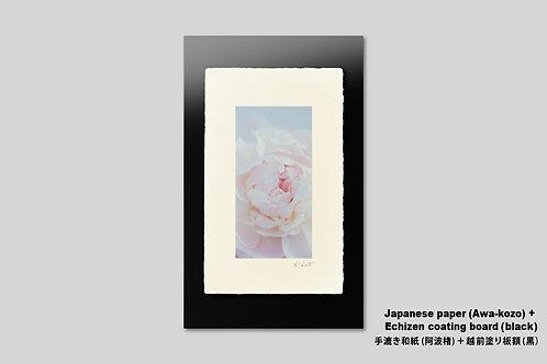 手漉き和紙,インテリア,花の写真,シャクヤク,和室,フラワー,モダン,インテリアフォト,アート,額装,オリジナルプリント,アートポスター,アートフレーム,おしゃれ,壁掛け,壁飾り,装飾