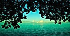 トロピカルな南の島の風景写真:海 ハワイ ヤシの木 インテリア 額入り 手漉き和紙 壁掛け アート