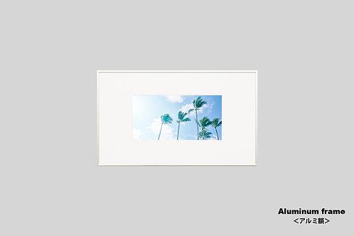 ヤシの木,インテリア,写真,ハワイ,インテリアフォト,アート,額入り,額装,オリジナルプリント,アートフレーム,フォトフレーム,おしゃれ,モダン,壁掛け,壁飾り,装飾,ウォールアート,新築祝い