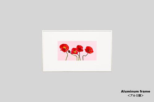 インテリア,写真,花,ポピー,かわいい,ピンク,フラワー,インテリアフォト,アート,額入り,額装,オリジナルプリント,アートフレーム,フォトフレーム,おしゃれ,モダン,新築祝い,プレゼント,壁掛け,壁飾り,装飾