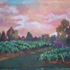 winery1_edited.jpg