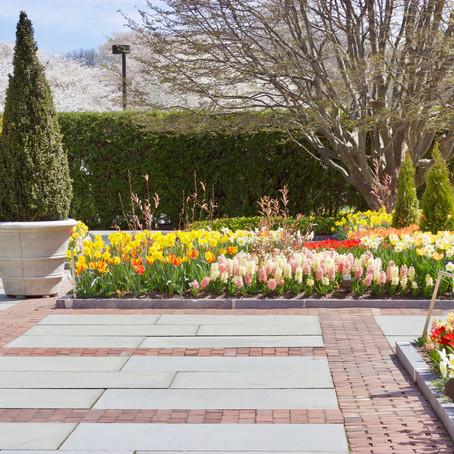 """Spring Blooms"" at Longwood Gardens"