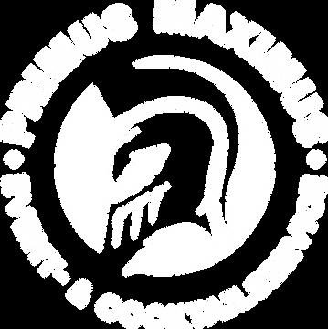 Logo_rund_PRIMUSMAXIMUS_free_white.png