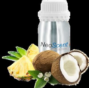 aroma odour odor coconut pineapple.png