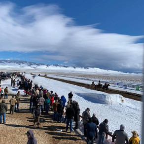 Saratoga Skijoring Races in Saratoga, Wyoming