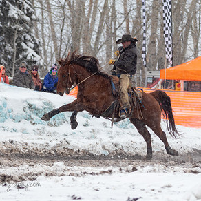 National Finals Skijoring Races in Red Lodge, Montana-CANCELLED