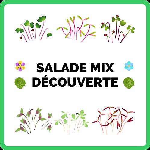 Salade Mix   Découverte 🧭