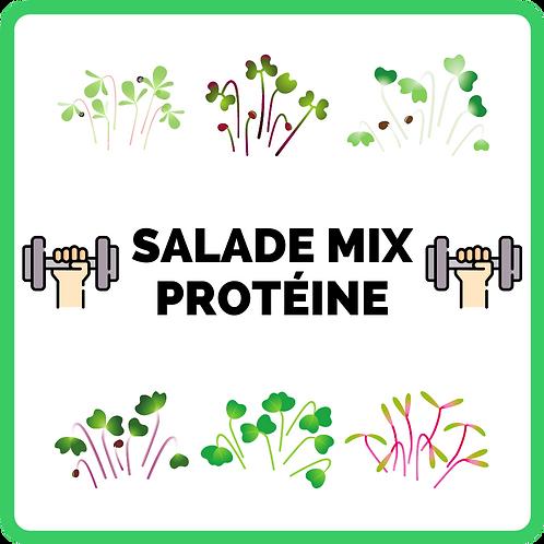 Salade Mix | Protéine 💪🏼