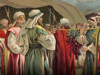 Rabbi as Priest & Prophet