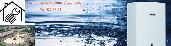 remont-gazovyh-kolonok-lomonosov