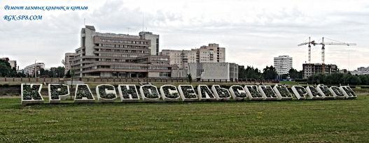 remont-gazovyh-kolonok-krasnoselskij-rajon