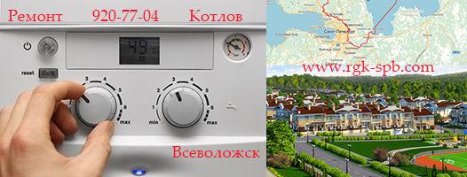 remont-kotlov-vsevolozhsk