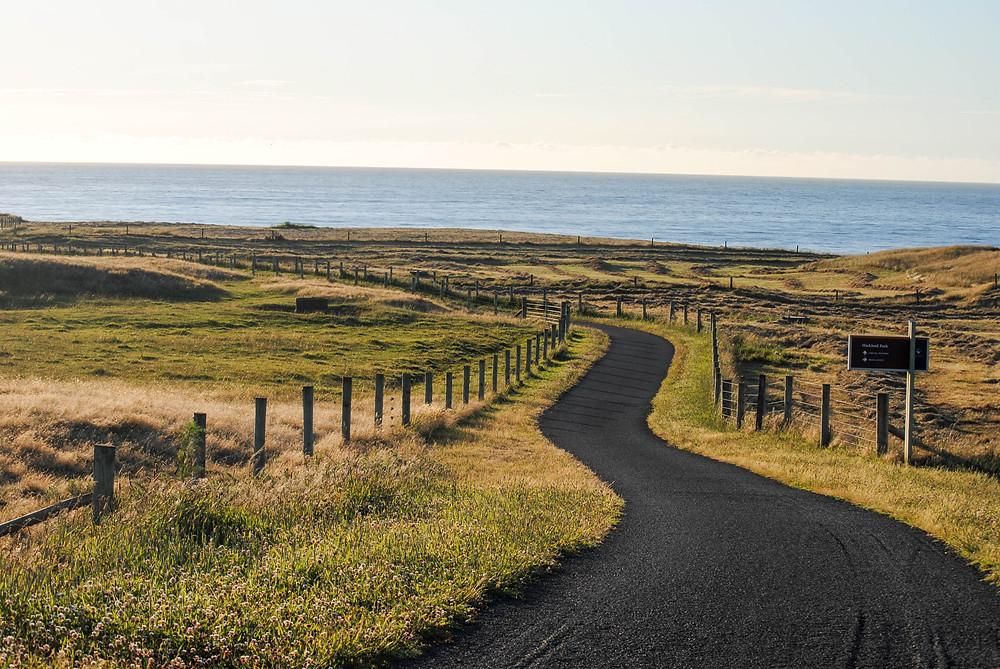 coastal walkway taranaki