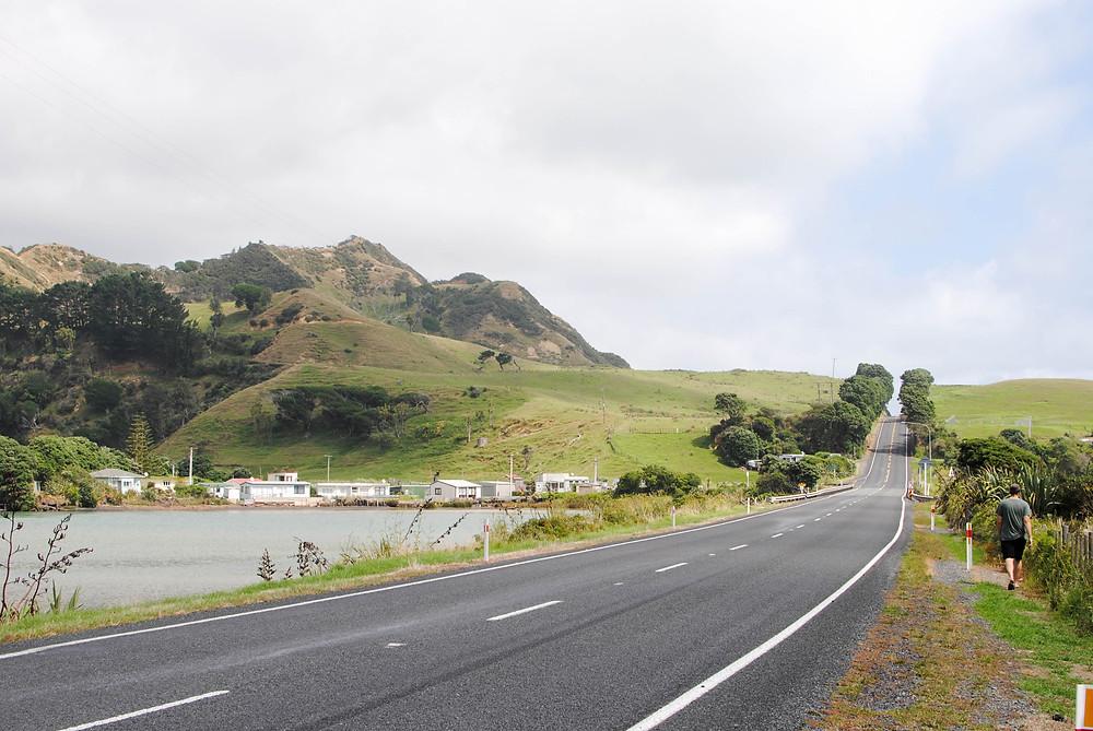 new zealand road highway