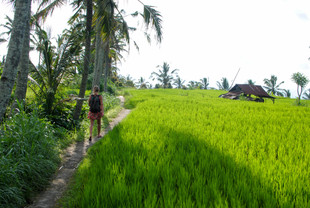 Sleepy Munduk, the alternative to Ubud you didn't know you were looking for