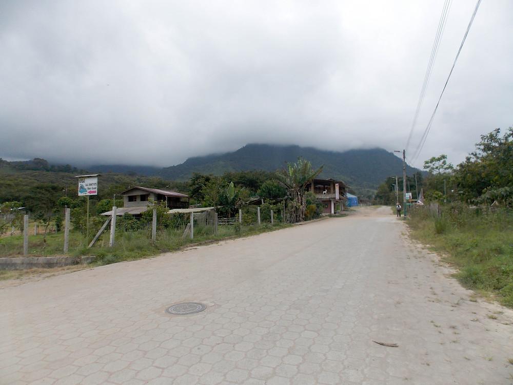 cloud forest mindo ecuador