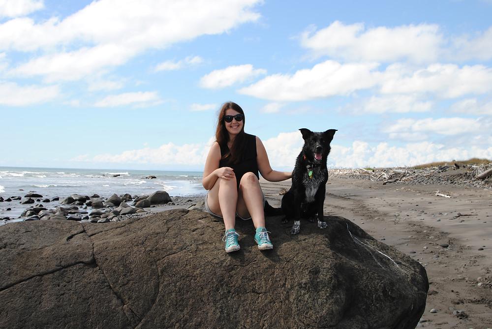 new plymouth beach dog
