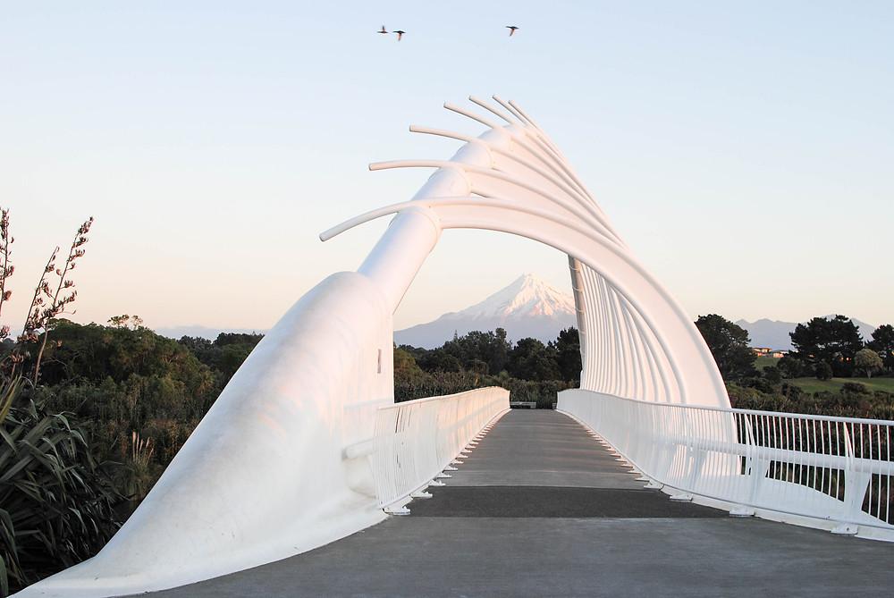 Te Rewa Rewa bridge Taranaki