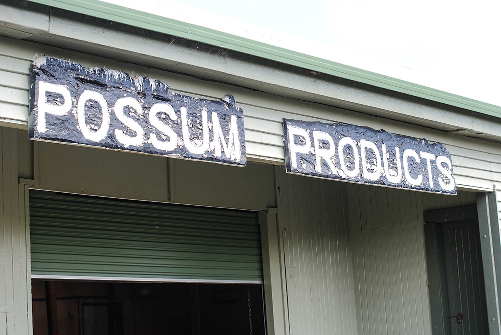 possum shop new zealand