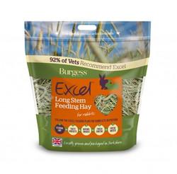 long stem feeding hay