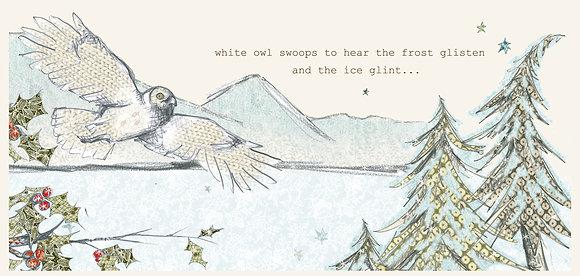 white owl frost