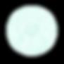 tm web - snowball1.png