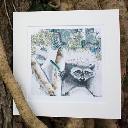 tricksy racoon mounted giclée print