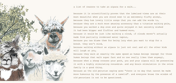 a list of reasons to take an alpaca for a walk...