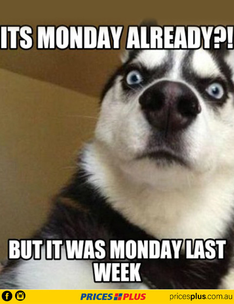 MondayAgain.jpg