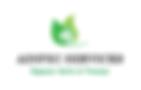 logo type AINPEC SERVICES.png