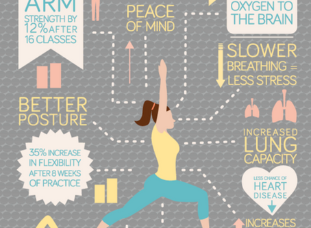 """A Beginners Guide to Yoga - What's All the Hype About?"""