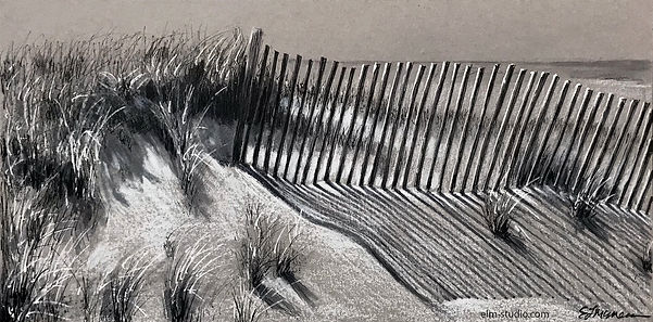fence on the dunes.jpg