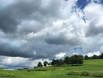 Storm over Gibbet Hill.jpg
