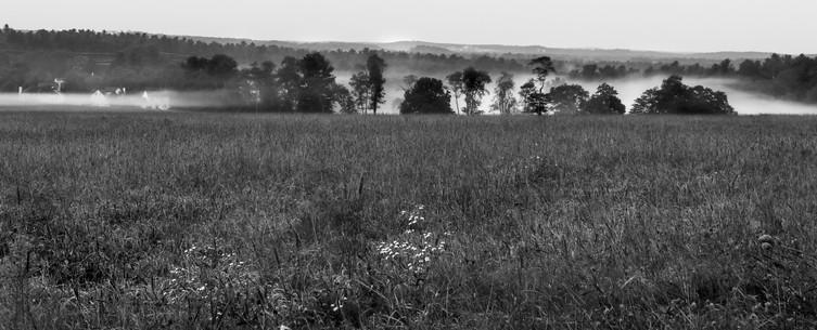 General Field fog.jpg