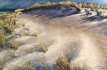 November Dunes.jpg