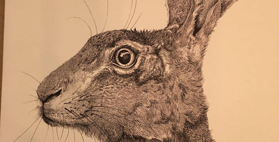 'Hare' Greetings Card